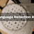 Language Detection API